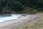 Pataua South beach where a 7-year-old boy died.