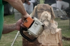 Joseph Wahlmueller chainsaw carving.  Photo/Supplied