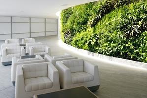 Qantas travel lounge.