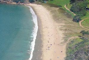 Pataua South beach. File photo / APN