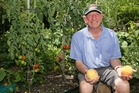 WINDFALL: Keen gardener Mike Brophy expects to have plenty of fallen fruit and vegetables to put in bins for analysis for fruit fly infestation. PHOTO/RON BURGIN