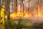Across the parched state of Victoria 130,00ha has burned and firefighters are still battling 35 blazes. Photo / AP