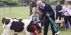 Waiharara School Calf Club