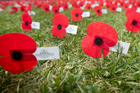 Don McIvor said Private Cox, who served with the Otago Regiment, was buried in Longueval War Cemetery in France. Photo / NZME.