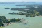 The plan will see Opua Marina extended as far as the jetty at bottom left of the photo. Photo / Michael Cunningham