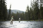 Fly-fishing in a river in Montana. Photo / Thinkstock