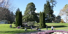 The park has beautiful and diverse flora, from gorgeous flowers year-round to enormous redwoods.