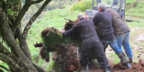 ROAD BLOCK: Brian Backhouse, Michael Meehan and Warrick Funnell clear the Makowhai road.
