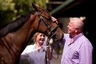David Ellis spent about $7 million on 43 horses at Karaka this year. Photo / Dean Purcell