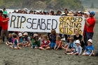 Protesters against seabed mining plans off the Taranaki/Wanganui coast. Photo/File