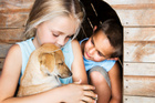 A well cared for pet can help children learn life skills. Photo / Thinkstock