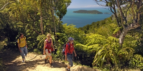 Walking the Queen Charlotte Track.