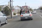 A video still of the man sitting on a couch clinging to the back of a hatchback towing him around central Dunedin. Photo / ODT