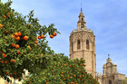 Valencia Cathedral is seen framed by orange trees in the foreground. The cathedral possesses a relic that is reputedly the chalice Jesus Christ used during the Last Supper. Photo / Thinkstock