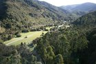 Gateway to the Tararua Forest Park. Photo / DOC