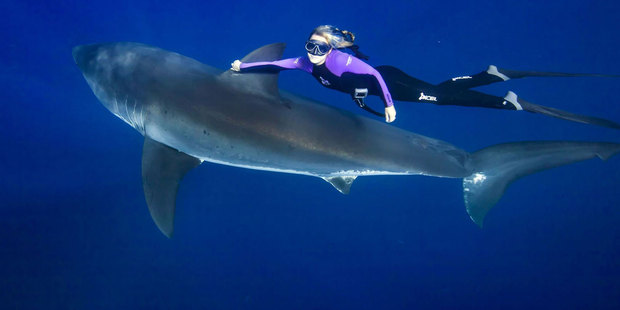 Ocean Ramsey is on a mission to change attitudes to sharks. Photo / oceanramsey.com