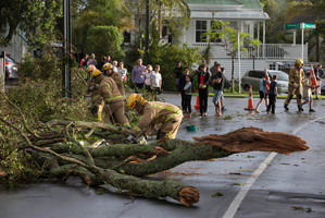 Emergency services, at the scene of a tornado on Wairoa Road, Devonport. Photo / Brett Phibbs