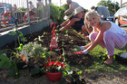Ten-year-old Maria Beiert helps Edible Kerikeri volunteers turn an unused berm into a vegetable garden.