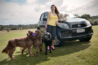 Sarah Litherland, MD of Wags to Whiskers. Pet specalist. Photo / Ted Baghurst