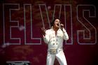 Elvis impersonator Steve Fitter entertains Elvis fans during the Elvis in the Gardens concert. Photo / Dean Purcell