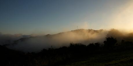 The fog in Wellington this morning. Photo / Adriel Kloppenburg