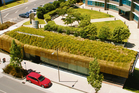 Auckland company Stormwater 360 is a green roof expert. Photo / Supplied