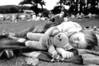 Samantha Lusty, 16 months, has a nap at the Auckland Domain during the annual Teddy Bears Picnic. Photo / NZ Herald