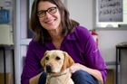 Professor Susan Friedman with Georgie, who will join the biosecurity team after training. Photo / Sarah Ivey