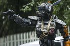 Chappie. Photo / Supplied