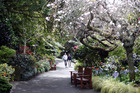 The Eden Garden is a treat at any time of year.Photo / Doug Sherring