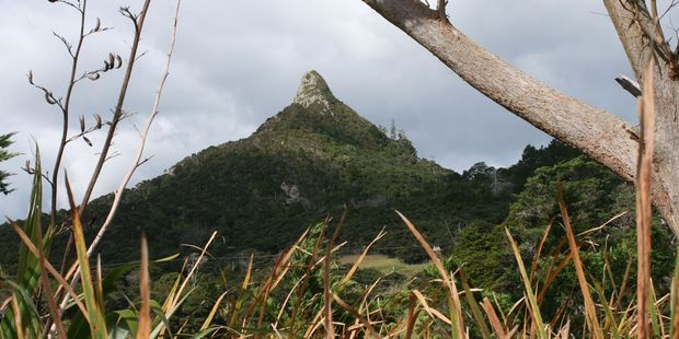 Locals have a soft spot for Tokatoka mountain, said by some to be an aid to fertility at certain times. Photo / Jim Eagles