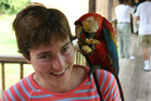 Tame macaws sit on visitors' shoulders at Peru's Tambopata Research Centre. Photo / Creative Commons image by Flickr user cammaert