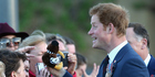 View: Photos: Prince Harry on tour in NZ