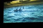 Image from film Vertigo Sea by John Akomfrah.