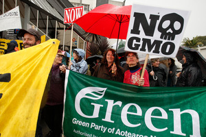 Marchers against GMO outside the Northland Regional Council building on Water Street in Whangarei in 2013. Photo / John Stone