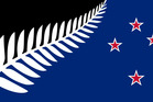 Changing the New Zealand Flag 2015 Silver Fern with Southern Cross Designed by: Kyle Lockwood. Photo / Supplied