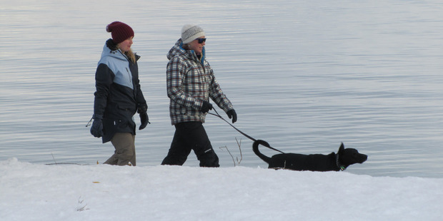 Rain, hail or snow, dogs must be walked. In this case, Benson by Shannon Trimble and Cat Kearsley, of Wanaka. Photo / Otago Daily Times