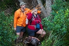 SAVIOURS: Graeme and Cherrie Lincoln, with dog Holly, have been part of a kiwi recovery programme in the Kaweka Range for 15 years. PHOTO/SUPPLIED