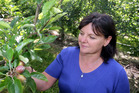 Lesley Wilson says New Zealand growers are already battling higher production costs. Photo / NZME