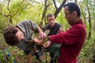 Extracting kakapo semen are Daryl Eason, Andrew Digby, and Sushil Sood. Photo / Tui De Roy