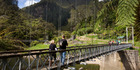 Karangahake Gorge is worth exploring. Photo / Alan Gibson