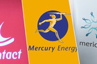 Four major companies rated below the mark - including Genesis Energy (64 per cent), Contact Energy (67 per cent), Mercury Energy and Meridian Energy (both 70 per cent).
