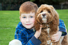 Tom Wilkinson uses hearing dog Albert to help him navigate the world.