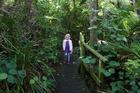 Fernglen Gardens in Birkenhead. Photo / Kelly Lynch