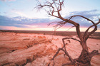 The Mungo National Park, a surreal dried-lake landscape, is a World Heritage listed site. Photo / Roberto Sera