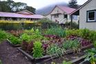 Gardening: Build a bed for summer veges