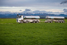 Synlait cuts milk price forecast