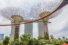 The extravagant Supertrees at Singapore's Gardens by the Bay. Photo / 123RF