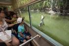Hartley's Crocodile Farm, Queensland. Photo / Supplied