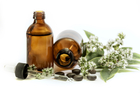 Plant medicine provides essential remedies for healthcare for 5.6 billion people. Photo / iStock